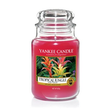 Tropical Jungle von Yankee Candle