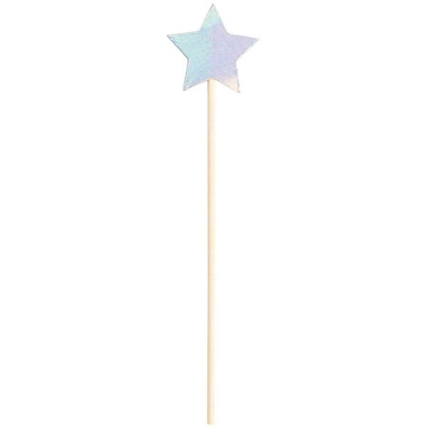 Picker Stern irisierend